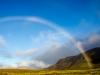 Veel regenbogen hier